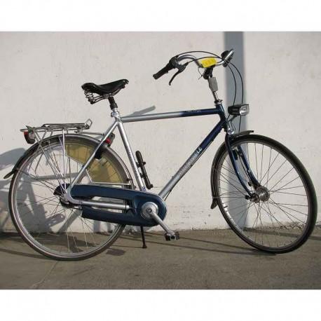 Multicycle - rower holenderski